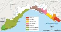 Liguria wine region