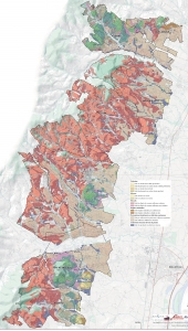 large-beaujolais-soils-map